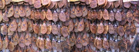 Ham01