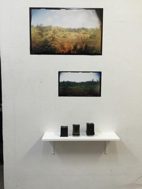 Bog cameras with Bog Diorama photographs